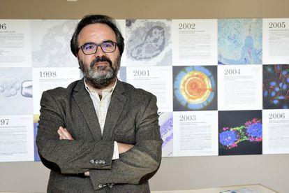 O biólogo Lluís Montoliu, do Centro Nacional de Biotecnologia, em Madri.
