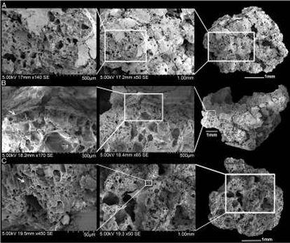 Imagem de três das amostras de pão vistas sob microscópio eletrônico de varredura.