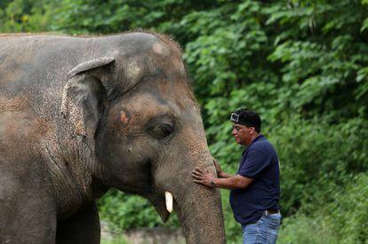 Kaavan junto de um integrante de uma das organizações de defesa dos direitos dos animais que conseguiram sua transferência
