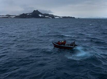 Cientistas coletam pela primeira vez o DNA de espécies que vivem na região de Discovery Bay, na Antártida.