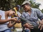Lilia y Karina, de la fundación Natütama, alimentan a un manatí que encontraron varado en la orilla del río Amazonas, mientras intentan ubicar a su madre. Pincha en la imagen para ver a fotogalería.