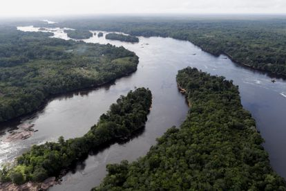 Vista aérea do rio Negro na região da fronteira entre o Brasil e a Colômbia, nesta quinta-feira, 3 de março.