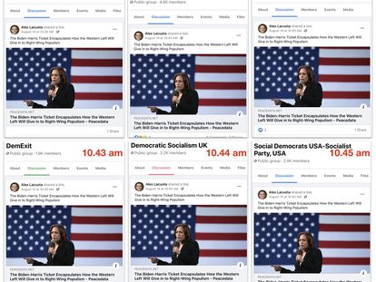 Exemplo de uma notícia compartilhada pelo suposto site de notícias 'Peace Data'.