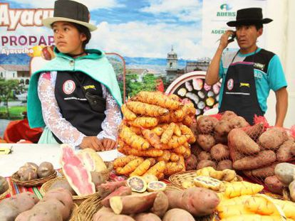 Agricultores andinos no Festival da batata nativa, em Lima.