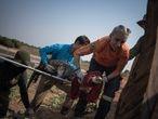 Ao menos 200 jacarés serão translocados no Pantanal devido à seca que assola o bioma