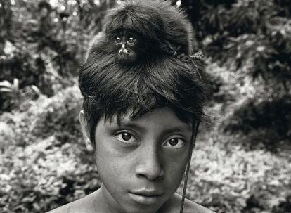 Um filhote de macaco, capturado e domesticado pelos awá, sobre a cabeça do jovem Yahara. Os awá formam uma das comunidades mais ameaçadas do planeta devido ao desmatamento descontrolado da Amazônia brasileira.