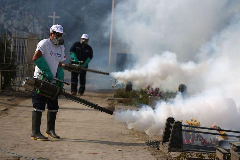 Inspetores da área da saúde agem para tentar conter a proliferação do mosquito no cemitério El Angel, em Lima, no Peru.