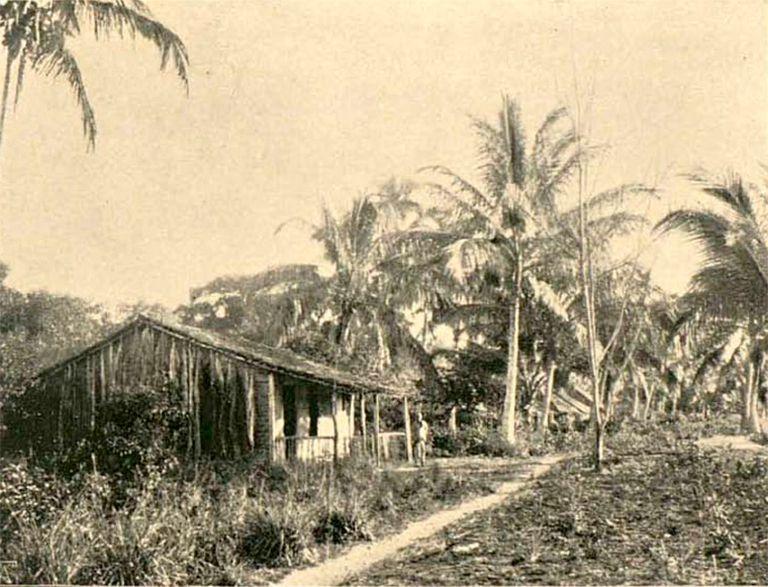 Terras cultivadas por posseiro na época do Império.