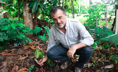Virgilio Viana, superintendente geral da Fundação Amazônia Sustentável