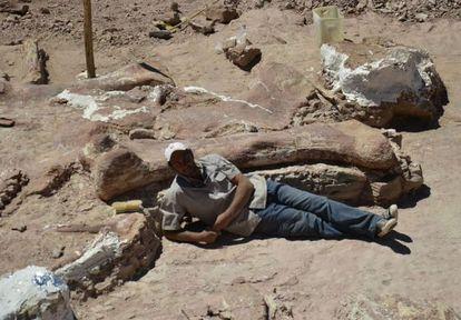 O paleontólogo José Luis Carballido, com o fêmur que descobriu.