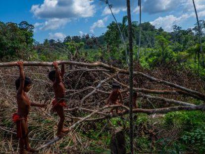 Etnia vive em terras dentro da reserva mineral extinta por decreto pelo Governo Temer, que gerou protestos no Brasil e no exterior. Decisão está suspensa, mas indígenas querem que ela seja derrubada de vez