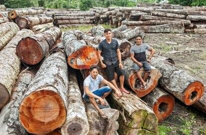 Extrativistas que trabalham no plano de manejo florestal sustentável: Elivaldo Ribeiro, Rosilei Barbosa Pimentel e Romildo Pimentel.