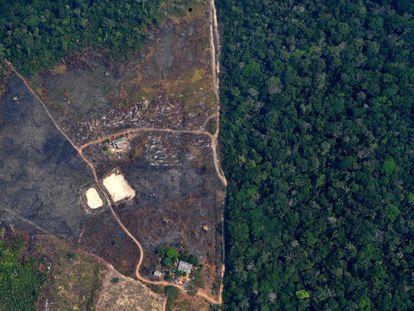 Vista aérea de uma terra desmatada na selva amazônica próxima aos incêndios, a cerca de 65 km de Porto Velho, no dia 24 de agosto.