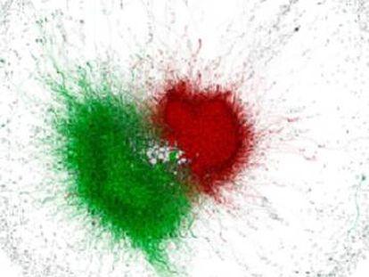 Redes russas foram ativadas para ajudar a ultradireita na Itália