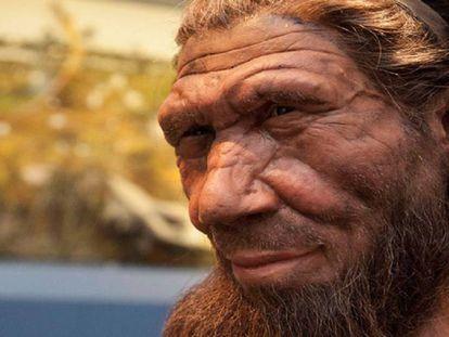 Reconstrução de um Neandertal no Museu de História Natural.