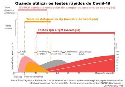 Ilustração mostra como cada tipo de teste funciona em momentos diferentes da infecção pela Covid-19. Caso sejam feitos em um período errado, há chances de que o resultado seja impreciso