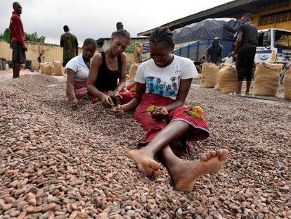 Um grupo de mulheres seleciona grãos de cacau em Abidjã, Costa do Marfim.