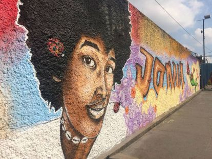 Muro em homenagem a Joana Bonifácio foi pintado próximo a estação Coelho da Rocha.