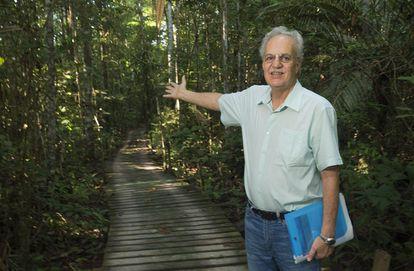 O cientista Carlos Nobre na Reserva Ecológica de Cuieiras, a 100 quilômetros de Manaus, na área de pesquisa do Instituto Nacional de Pesquisas da Amazônia (INPA).