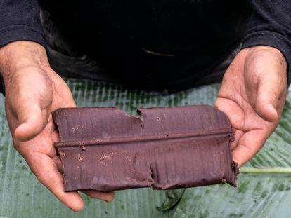 Roraima, 07/2018, Boa Vista.  Oficina de Cacau e produção de chocolate ministrada pelo professor, César de Mendes para os Ye'kwana e Yanomami, na comunidade Waikás.