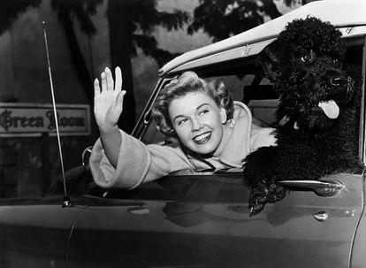 Doris Day no seu carro com seu cão, em 1955. A atriz, que morreu em 2019, passou seus últimos anos encerrada em casa com seus animais.