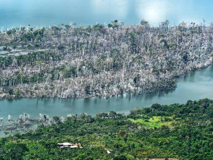 Vista aérea de uma parte da floresta amazônica incendiada no Brasil.
