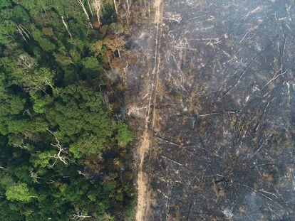 Vista de área desmatada na Amazônia em agosto de 2020.