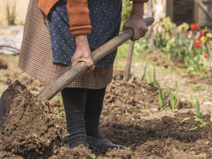 Uma mulher trabalha em um jardim, em uma imagem de arquivo.
