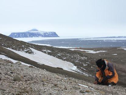 Um paleontólogo no sítio da rã na Ilha Seymour, no norte da península antártica.