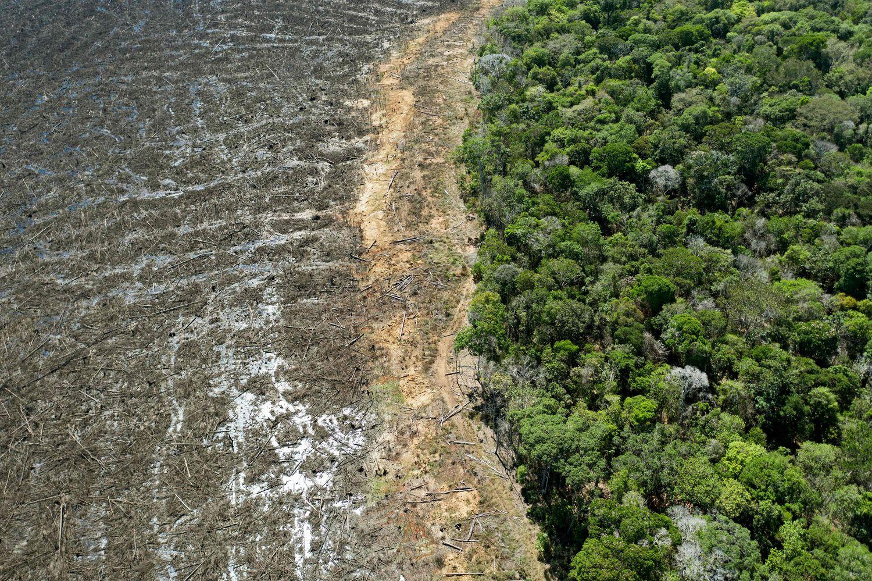 Foto aérea tirada em 07 de agosto de 2020 de uma área desmatada próxima a Sinop, Estado de Mato Grosso, Brasil.