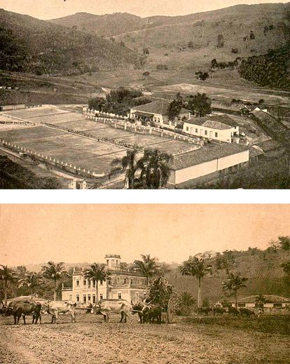 Grandes propriedades rurais em São Paulo e Pernambuco no fim do Império.