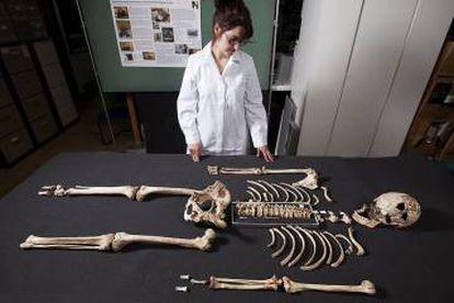 """Esqueleto do """"Homem de Cheddar""""."""