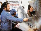 Richard Dreyfuss hace buenas amigas con uno de sus compañeros de reparto, el tiburón, durante el rodaje.