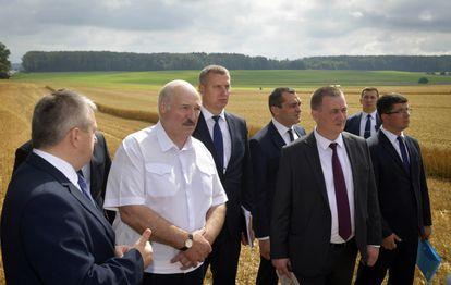 Aleksandr Lukashenko, de camisa branca, em visita a uma empresa agrícola no distrito de Nesvizh, em 27 de julho.