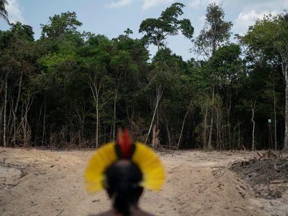 Cúpula do Clima, Biden e Amazônia