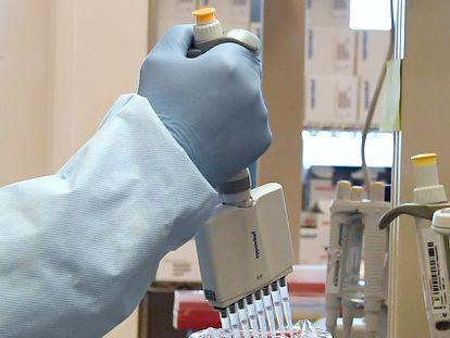 Microbiologista realiza um teste de PCR para detectar infecção por coronavírus.
