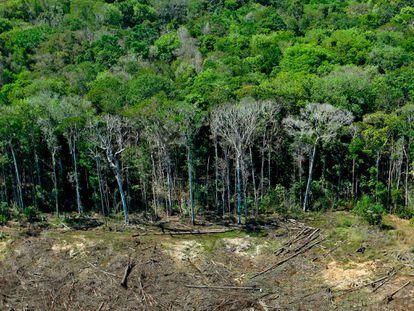 Imagem de arquivo mostra área de desmatamento em Mato Grosso em agosto de 2020.
