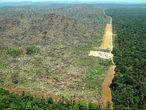 Amazonia deforestada en Brasil para plantar soja