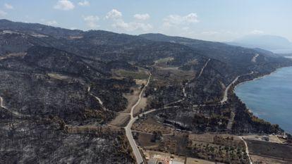 Colinas queimadas por um dos incêndios florestais da ilha grega de Eubea, no dia 12