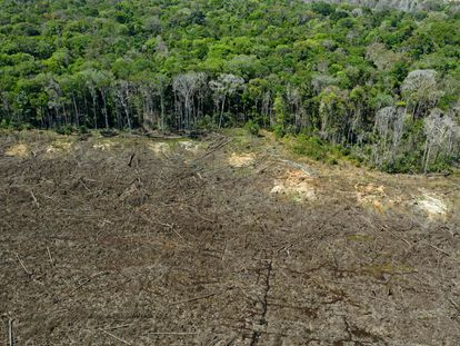Área desmatada no município de Sinop (MT), em agosto do ano passado.