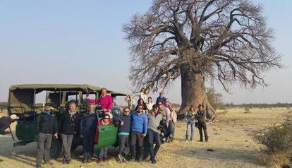 Um grupo de viajantes posa diante de um dos baobás gigantes perto de Gweta.
