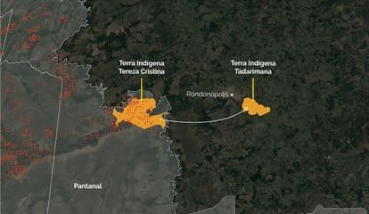 Indígenas relataram que, terra Tadarimana, próximo a Rondonópolis e fora do Pantanal, sofreu antes com as queimadas. Pessoas precisaram ir para lá quando as queimadas passaram à terra Tereza Cristina, em agosto e setembro.