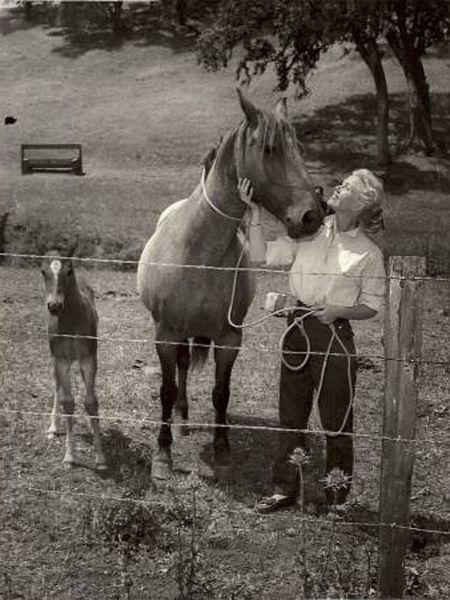 Doris Day, em uma foto de arquivo pessoal, sem data.