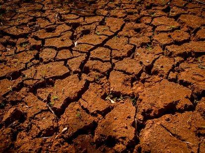 Terra rachada pela seca no local onde ficava um açude em Fernandópolis (SP).