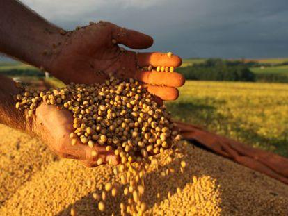 Colheita de grãos cresceu 130% e logística não acompanhou