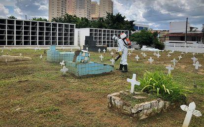 Coveiro realiza manutenção em cemitério de Salvador.
