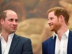 Britain's Prince William and Prince Harry attend the opening of the Greenhouse Sports Centre in central London, April 26, 2018. REUTERS/Toby Melville/Pool - RC110704CA10