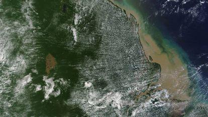 Imagem de satélite da área em que foi encontrado o recife de coral.