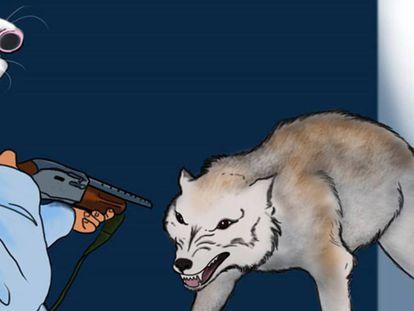Ilustração do livro da NRA.