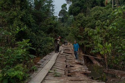 """Índígenas Karipuna observam a ponte destruída com motosserra dentro da TI. """"Foi represália dos madeireiros"""", dizem"""